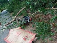 Nhói lòng nhìn cảnh tan hoang ở Thừa Thiên - Huế sau cơn bão số 5