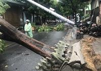 Điện lực Đà Nẵng nói gì về vụ việc cột điện gãy do bão số 5