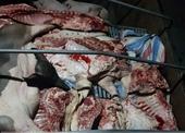 Hãi hùng hàng tấn thịt lợn hôi thối, dính tả lợn Châu Phi đem đi tiêu thụ