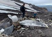 Sông băng tan chảy làm lộ diện xác pháo đài bay Mỹ sau 76 năm