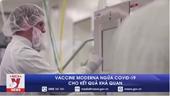 Vaccine Moderna ngừa COVID-19 cho kết quả khả quan