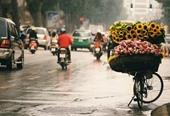 Cả 3 miền có mưa dông trong ngày Tết Trung thu