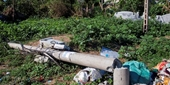 Thứ trưởng Bộ Công thương trả lời việc hàng trăm cột điện bị gãy đổ
