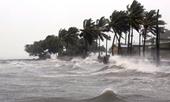 Các địa phương chủ động ứng phó với vùng áp thấp nhiệt đới và mưa lớn