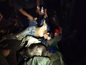 Hai thanh niên đi xe máy chở nhiều chó, bị dân vây bắt đánh tơi tả