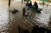 Hà Tĩnh lệnh sơ tán hơn 45 000 người dân vùng hạ du ngập nặng