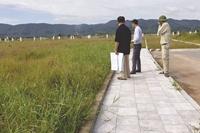 Mở bán đất nghĩa trang khi chưa được phê duyệt giá đất bị xử lý như thế nào