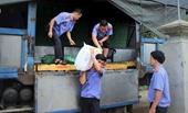 Công đoàn VKSND tối cao hỗ trợ bà con vùng lũ tỉnh Thừa Thiên Huế