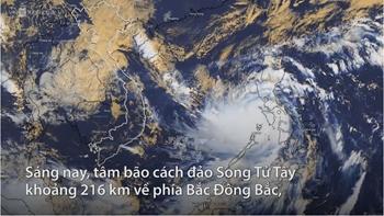 Sức gió bão số 9 gần đạt cấp thảm họa