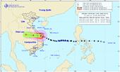 Tâm bão đang trên đất liền Quảng Nam đến Bình Định, gió giật cấp 12