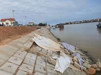 Hư hỏng nghiêm trọng tại dự án nâng cấp kè 26 tỉ đồng