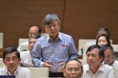 Đại biểu Quốc hội đề nghị làm rõ diện tích các loại rừng