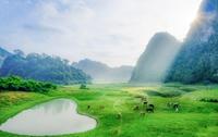 """Miền thảo nguyên xanh đẹp tựa """"tiên cảnh"""" cách Hà Nội chỉ hơn 100km"""
