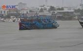 Những thiệt hại ban đầu do bão số 12