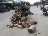 Kiểm sát hiện trường vụ xe lôi kéo tự chế chở gỗ đè chết người