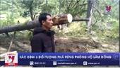 Xác định 6 đối tượng phá rừng phòng hộ Lâm Đồng