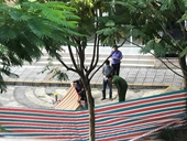 Kiểm sát hiện trường một phụ nữ rơi từ tầng 18 chung cư xuống đất tử vong