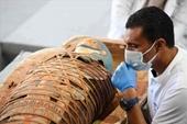 """Phát hiện kinh ngạc về """"kho báu cổ đại"""" 2 500 năm tuổi ở Ai Cập"""