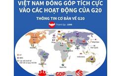 Việt Nam đóng góp tích cực vào các hoạt động của G20