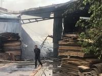 Cháy dữ dội tại cơ sở sản xuất gỗ ép