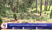 Khởi tố vụ án hủy hoại rừng phòng hộ đầu nguồn ở Lâm Đồng