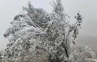 Chùm ảnh Nhiệt độ xuống âm 9 độ, băng tuyết phủ kín nhiều nơi