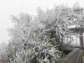 Miền Bắc rét đậm rét hại, vùng núi cao khả năng sẽ có mưa tuyết và băng giá