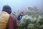 Tuyết rơi trắng xóa ở Lào Cai, du khách đua nhau khoe hình check-in