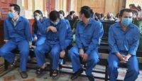 VKSND cấp cao TP HCM kháng nghị tăng án 8 cựu cán bộ Petroland