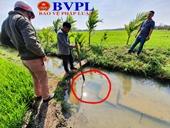 Ngán ngẩm với kênh thủy lợi đầu tư hàng chục tỉ đồng, rồi bỏ hoang ở Đắk Lắk