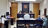 Phối hợp triển khai, thực hiện Đề án về quyền sở hữu tài sản của tổ chức, cá nhân