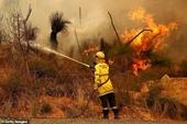 Cháy rừng kinh hoàng ở Tây Úc giữa lúc 2 triệu dân đang bị phong tỏa do COVID-19