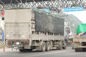 Vụ lợn nhập khẩu trốn kiểm dịch Sau khi VKS yêu cầu, Hải quan đã khởi tố vụ án