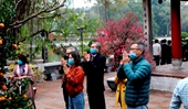 Người Hà Nội vãn cảnh chùa, cầu chúc bình an cho năm mới