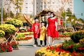Đường hoa Home Hanoi Xuân Điểm đến an toàn Tết Tân Sửu