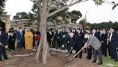 Tổng Bí thư, Chủ tịch nước dâng hương và trồng cây tại Hoàng Thành Thăng Long