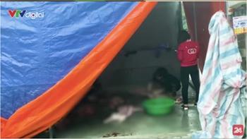 Thâm nhập thủ phủ buôn bán lợn bệnh chết giữa Thủ đô Hà Nội
