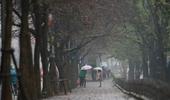 Miền Bắc ngày âm u, trời rét, mưa rào và dông