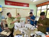 CLIP Phát hiện lô dược phẩm lậu cực lớn từ sân bay Nội Bài