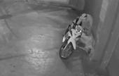 CLIP Nam thanh niên nhậu say ngủ trước cửa nhà, bị trộm mất xe và điện thoại