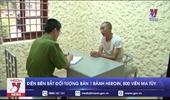 Điện Biên bắt đối tượng buôn bán 1 bánh heroin, 800 viên ma túy