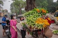 Tháng Tư - Tinh khôi hoa loa kèn