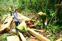 Nét đẹp cán bộ, công chức ngành Kiểm sát Lội rừng làm án