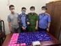 Triệt xóa đường dây ma túy lớn ở Quế Phong