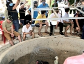 60 cán bộ chiến sĩ Công an bao vây, phá sới đá gà ăn tiền ở Quảng Bình
