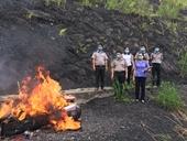 VKSND tỉnh Điện Biên Kiểm sát tiêu hủy vật chứng, tài sản của 20 bản án có hiệu lực