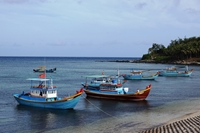 Kỳ thú Đảo Phú Quý