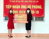 Tập đoàn T T Group ủng hộ 2 tỷ đồng giúp Gia Lai chống dịch COVID-19