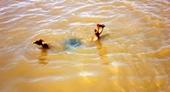 Hai cháu nhỏ đuối nước thương tâm khi theo bố mẹ đi cày ruộng