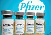 Vắc xin Pfizer chưa được bán thương mại, bất kỳ giao dịch nào đều là sản phẩm giả mạo